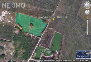 Foto de terreno industrial en venta en avenida lagos , cholul, mérida, yucatán, 9266655 No. 01