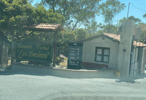 Foto de terreno habitacional en venta en avenida las haras , los encinos, puebla, puebla, 12301117 No. 01