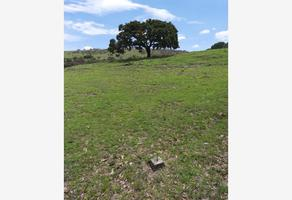 Foto de terreno comercial en venta en avenida las haras sin numero, lomas flor del bosque, puebla, puebla, 0 No. 01
