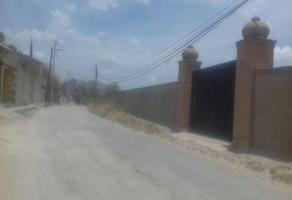 Foto de terreno habitacional en venta en avenida las palmas , la magdalena, zapopan, jalisco, 0 No. 01