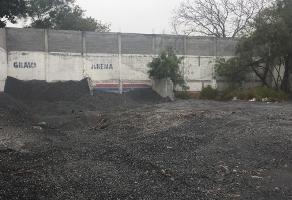 Foto de terreno habitacional en renta en avenida lauro villar , méxico agrario, matamoros, tamaulipas, 0 No. 01