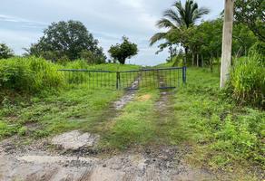 Foto de terreno habitacional en venta en avenida lazaro cardenas , lindavista, pueblo viejo, veracruz de ignacio de la llave, 21483204 No. 01