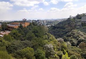 Foto de departamento en renta en avenida lomas anahuac 133, lomas anáhuac, huixquilucan, méxico, 9711399 No. 01