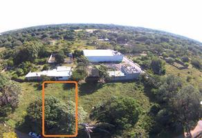 Foto de terreno habitacional en venta en avenida los mangos , paso colorado, medellín, veracruz de ignacio de la llave, 17820556 No. 01
