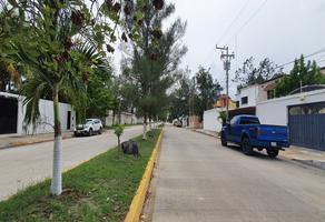 Foto de terreno habitacional en renta en avenida los pinos , playa norte, carmen, campeche, 0 No. 01