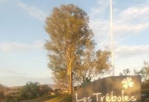 Foto de terreno comercial en venta en avenida los treboles , los molinos, zapopan, jalisco, 5233346 No. 01