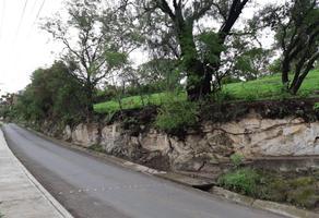 Foto de terreno habitacional en venta en avenida morelos s/n , santiago undameo, morelia, michoacán de ocampo, 18843527 No. 01