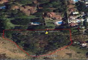 Foto de terreno habitacional en venta en avenida palmira , palmira tinguindin, cuernavaca, morelos, 14817050 No. 01
