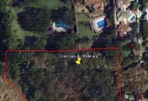 Foto de terreno habitacional en venta en avenida palmira , palmira tinguindin, cuernavaca, morelos, 0 No. 01