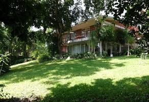 Foto de casa en renta en avenida palmira , palmira tinguindin, cuernavaca, morelos, 0 No. 01