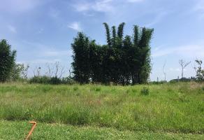 Foto de terreno habitacional en venta en avenida paseos solares 904, solares, zapopan, jalisco, 0 No. 01