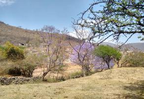 Foto de terreno habitacional en venta en avenida pedro parra centeno 2a, tlajomulco centro, tlajomulco de zúñiga, jalisco, 6761529 No. 02