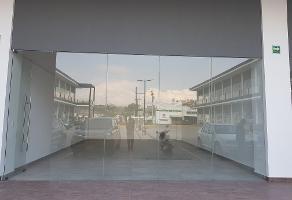Foto de local en renta en avenida peñuelas , san pedrito peñuelas, querétaro, querétaro, 5257892 No. 01