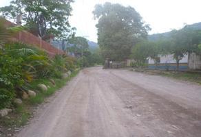 Foto de terreno habitacional en venta en avenida playa grande 350, cristóbal colon, puerto vallarta, jalisco, 8877391 No. 01