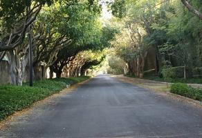 Foto de terreno habitacional en venta en avenida ramon corona 1100, la mojonera, zapopan, jalisco, 0 No. 01