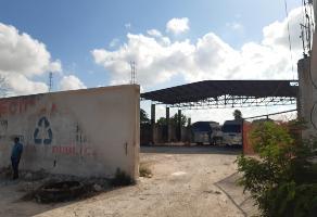 Foto de bodega en venta en avenida rancho viejo , región 236, benito juárez, quintana roo, 0 No. 01