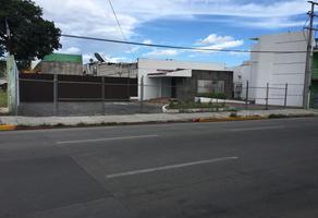 Foto de terreno comercial en renta en avenida reforma. , emiliano zapata, cuautla, morelos, 14342534 No. 01