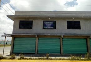 Foto de local en renta en avenida santa ines y hacienda agua nueva s/n , ex-hacienda santa inés, nextlalpan, méxico, 12271563 No. 01