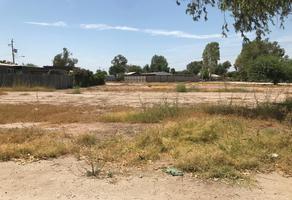 Foto de terreno habitacional en venta en avenida tapira , islas agrarias b, mexicali, baja california, 17175403 No. 01