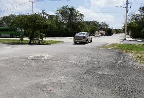 Foto de terreno industrial en venta en avenida timon , puerto morelos, benito juárez, quintana roo, 6898591 No. 01