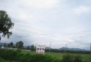 Foto de terreno habitacional en venta en avenida toluca , villa cuauhtémoc, otzolotepec, méxico, 14076693 No. 01