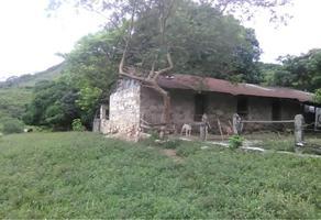 Foto de rancho en venta en ayotoxco 101, ayotoxco de guerrero, ayotoxco de guerrero, puebla, 14972581 No. 01