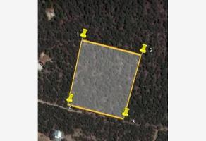 Foto de terreno habitacional en venta en  , ayuntamiento, arteaga, coahuila de zaragoza, 0 No. 01