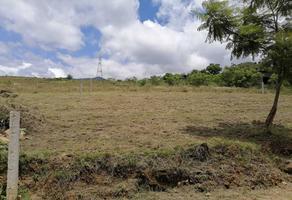 Foto de terreno habitacional en venta en azucena s/n , san pablo etla, san pablo etla, oaxaca, 0 No. 01