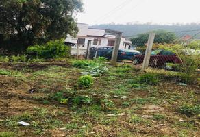 Foto de terreno habitacional en venta en azucenas sin numero , lomas de antequera, oaxaca de juárez, oaxaca, 18695753 No. 01