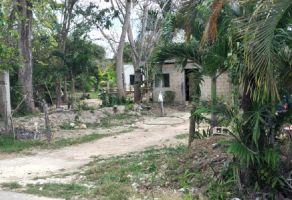 Foto de terreno habitacional en venta en Bacalar, Bacalar, Quintana Roo, 16415619,  no 01