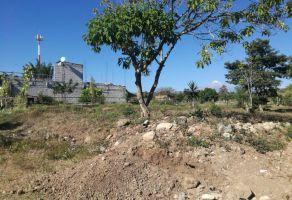 Foto de terreno habitacional en venta en Los Ceresos, Córdoba, Veracruz de Ignacio de la Llave, 5484914,  no 01