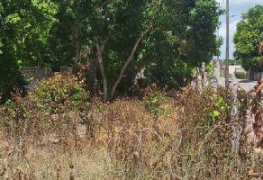 Foto de terreno habitacional en venta en 5 de Mayo, Bacalar, Quintana Roo, 16412126,  no 01