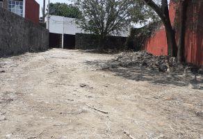 Foto de terreno habitacional en venta en Vista Hermosa, Cuernavaca, Morelos, 13665347,  no 01