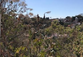 Foto de terreno habitacional en venta en Rancho Tetela, Cuernavaca, Morelos, 19745281,  no 01
