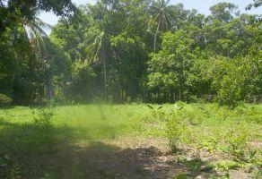 Foto de terreno habitacional en venta en Santo Domingo Tehuantepec Centro, Santo Domingo Tehuantepec, Oaxaca, 20365474,  no 01