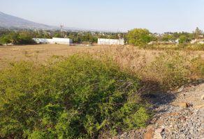 Foto de terreno habitacional en venta en Tenencia de Morelos, Morelia, Michoacán de Ocampo, 19985055,  no 01