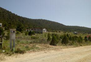 Foto de terreno habitacional en venta en San Antonio de las Alazanas, Arteaga, Coahuila de Zaragoza, 21515709,  no 01