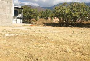 Foto de terreno habitacional en venta en San Raymundo Jalpan, San Raymundo Jalpan, Oaxaca, 21628770,  no 01