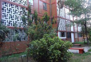 Foto de departamento en renta en Jardín Balbuena, Venustiano Carranza, DF / CDMX, 15095609,  no 01