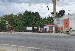 Foto de terreno habitacional en venta en Melchor Ocampo, Mérida, Yucatán, 20520890,  no 01