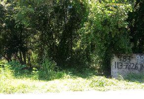 Foto de terreno habitacional en venta en Calderitas, Othón P. Blanco, Quintana Roo, 16887167,  no 01