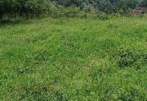 Foto de terreno habitacional en venta en Ticuahutipan, Xico, Veracruz de Ignacio de la Llave, 21322816,  no 01