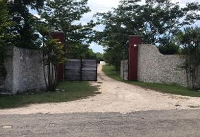Foto de rancho en venta en . , baca, baca, yucatán, 13848913 No. 01