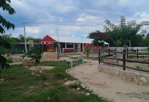 Foto de terreno comercial en venta en  , baca, baca, yucatán, 14169598 No. 01