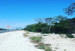 Foto de terreno habitacional en venta en  , baca, baca, yucatán, 14263220 No. 01