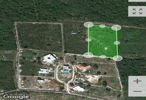 Foto de terreno habitacional en venta en  , baca, baca, yucatán, 0 No. 01