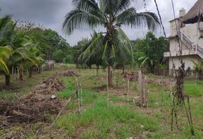 Foto de terreno comercial en venta en  , bacalar, bacalar, quintana roo, 0 No. 01