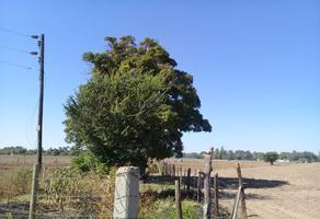 Foto de terreno habitacional en venta en  , bachimeto, navolato, sinaloa, 18875980 No. 01