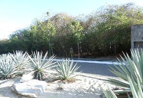 Foto de terreno habitacional en venta en  , bahía de conejo, santa maría huatulco, oaxaca, 1198303 No. 01