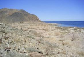 Foto de terreno habitacional en venta en bahia de los angeles , bahía, ensenada, baja california, 0 No. 01